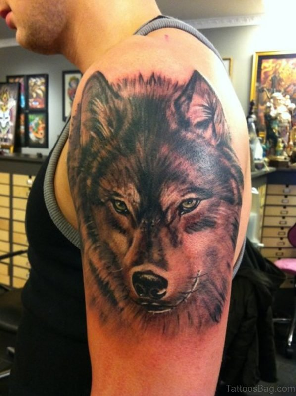 Wolf Tattoo Design On shoulder