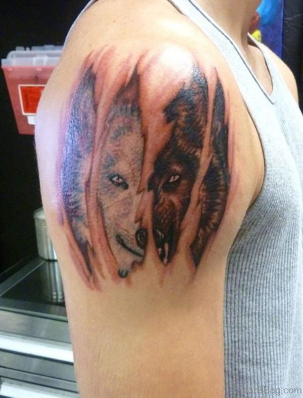 Ipped Skin Wolf Tattoo On Right Shoulder