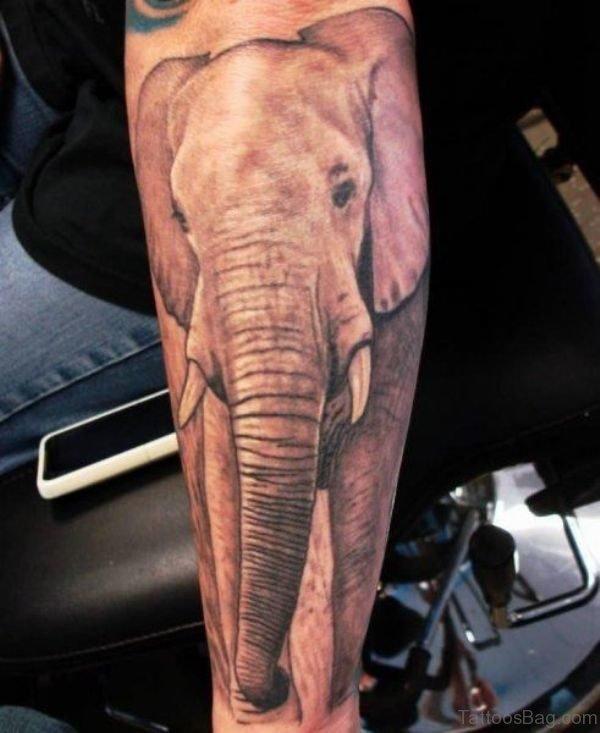 Abstract Elephant Forearm Tattoo