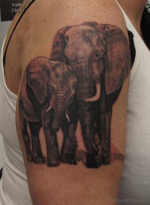 African Elephent Shoulder Tattoo