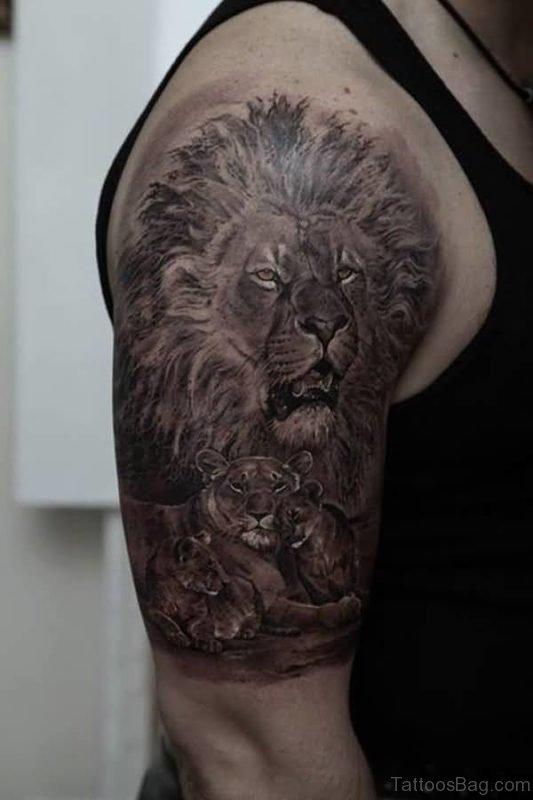 African Lion Tattoo Design On Shoulder