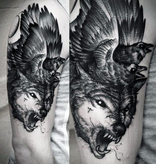 Alpha Wolf With Crows Tattoo On Shoulder