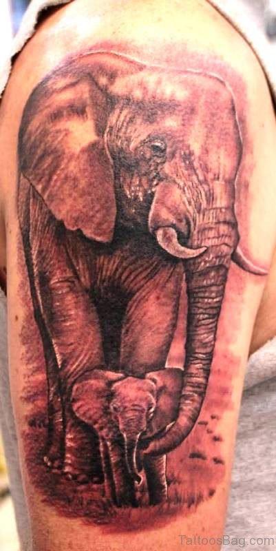 Amazing Elephant Tattoo On Shoulder