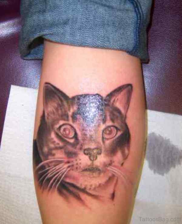 Angry Cat Tattoo On Leg