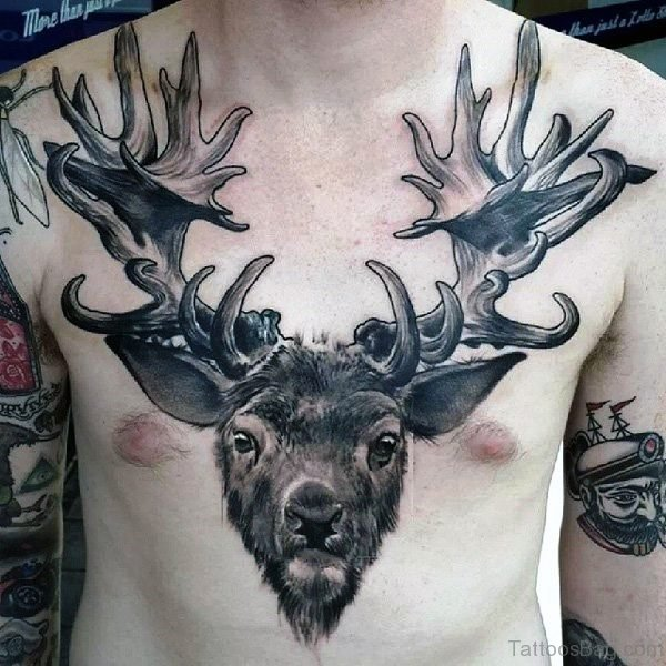 Attractive Buck Tattoo On Chest