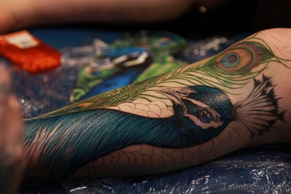 Awesome Peacock Tattoo On Leg