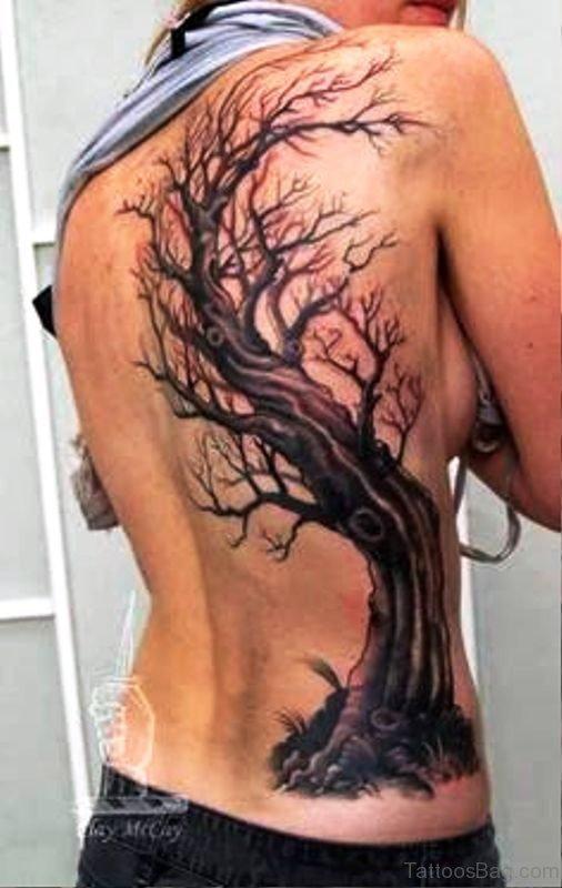 Beautiful Tree Tattoo On Back
