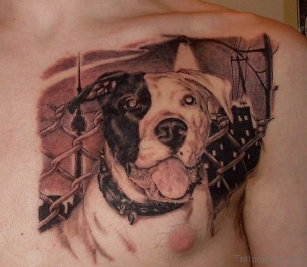 Best Dog Portrait Tattoo On Chest