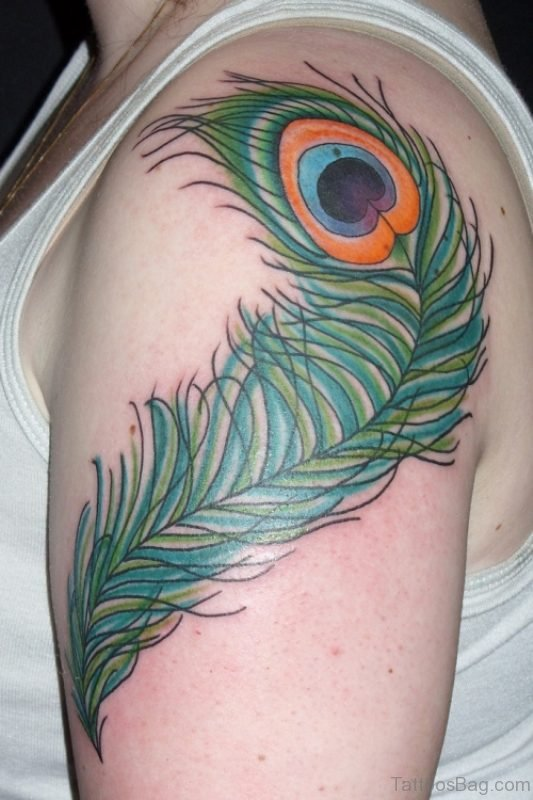 Best Peacock Feather Tattoo
