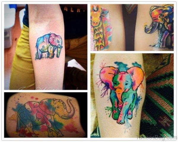 Best elephant Forearm Tattoo