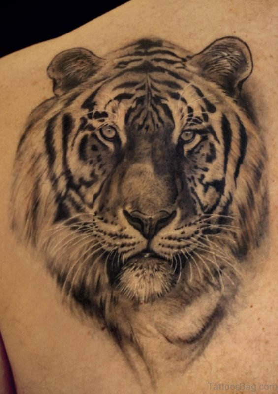 Black And White Tiger Tattoo On Shoulder