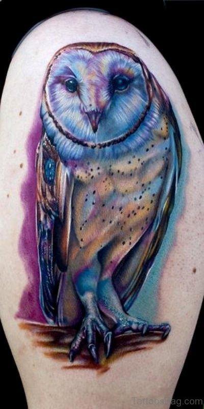 Blue Owl Shoulder Tattoo