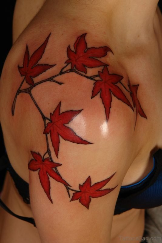 Candian Leaf Tattoo On Shoulder