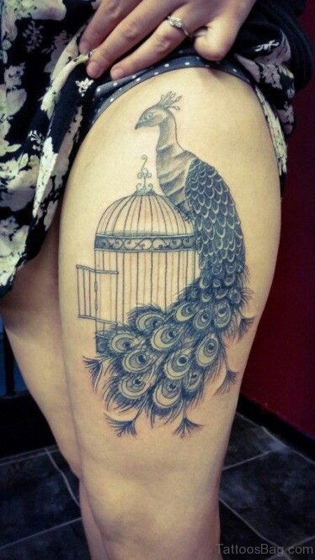 Charming Peacock And Cage Tattoo