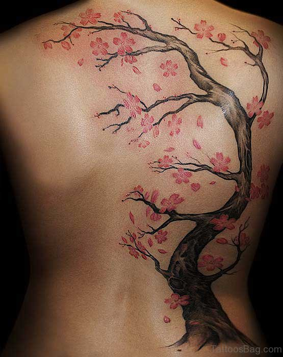 Cherry Blossoms On Back Body