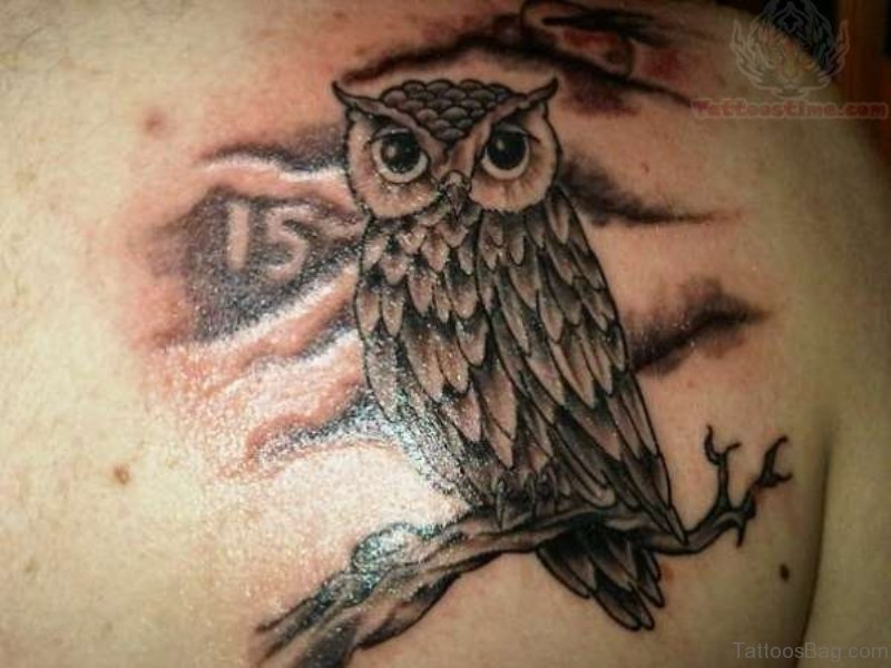 7ad64fabe04c6 77 Best Owl Tattoo On Shoulder