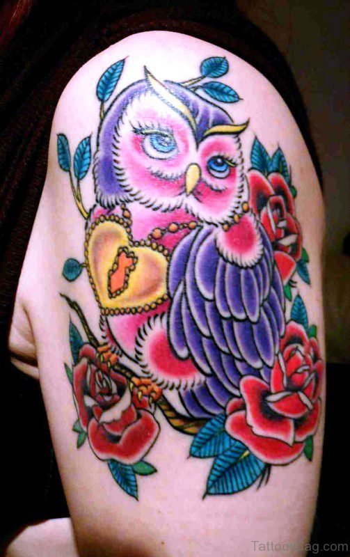Colorful Owl Tattoo On Shoulder