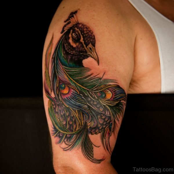Colorful Peacock Tattoo Design On Shoulder