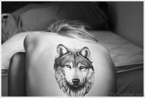 Delightful Alpha Wolf Tattoo On Back