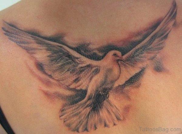 Dove Tattoo Design On Back