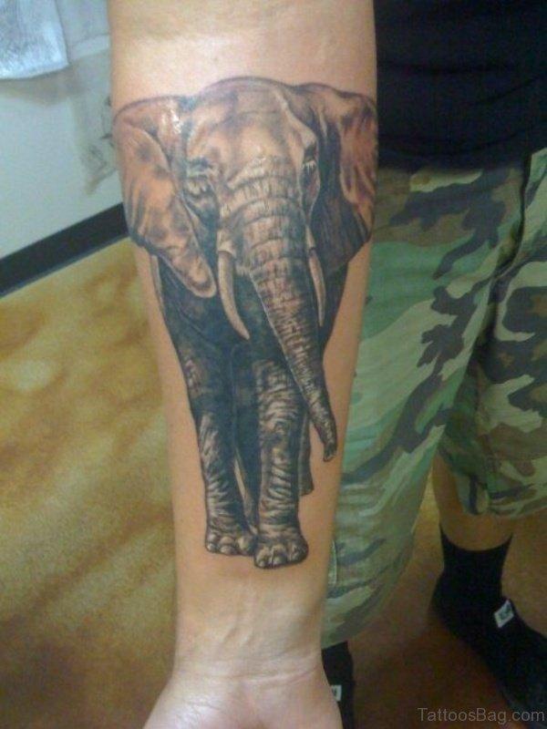Forearm Elephant Tattoo