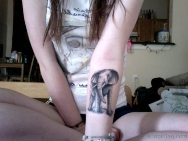 Grey Elephant Forearm Tattoo