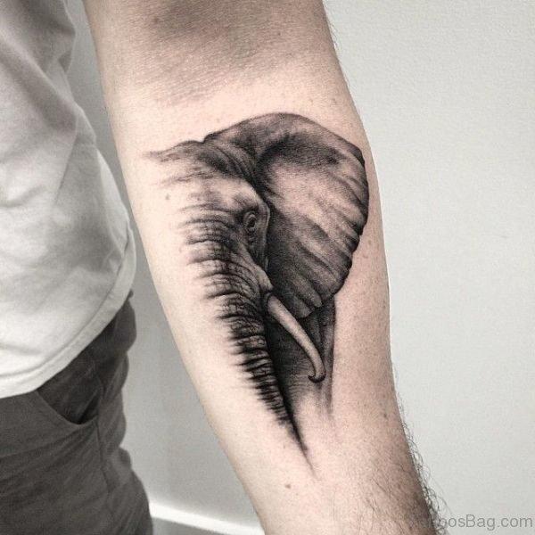 Half Face Elephant Tattoo On Forearm