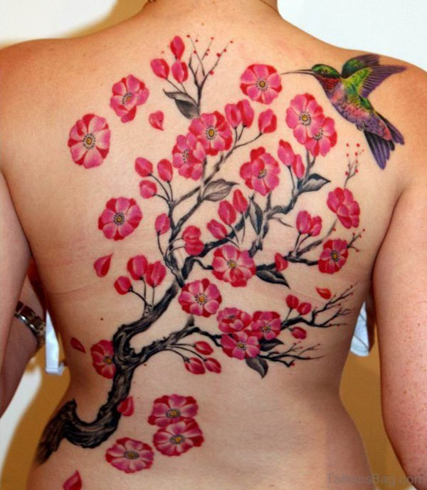 Hummingbird And Cherry Blossom Tattoo On Back