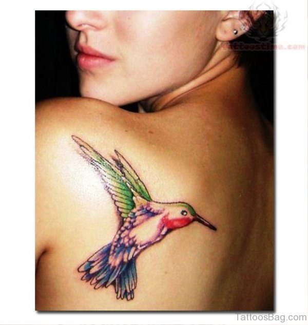 Hummingbird Tattoo On Back Shoulder