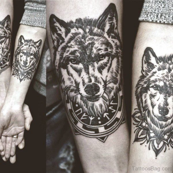 Incredible Alpha Wolves Tattoos On Both Arms