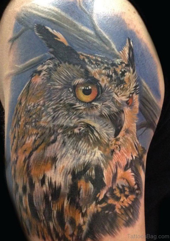 Incredible Owl Tattoo On Shoulder