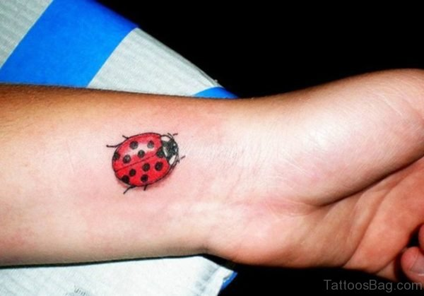 Ladybug Tattoo Design On Wrist