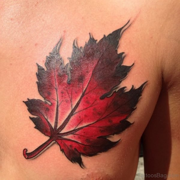 Leaf Tattoo On Chest