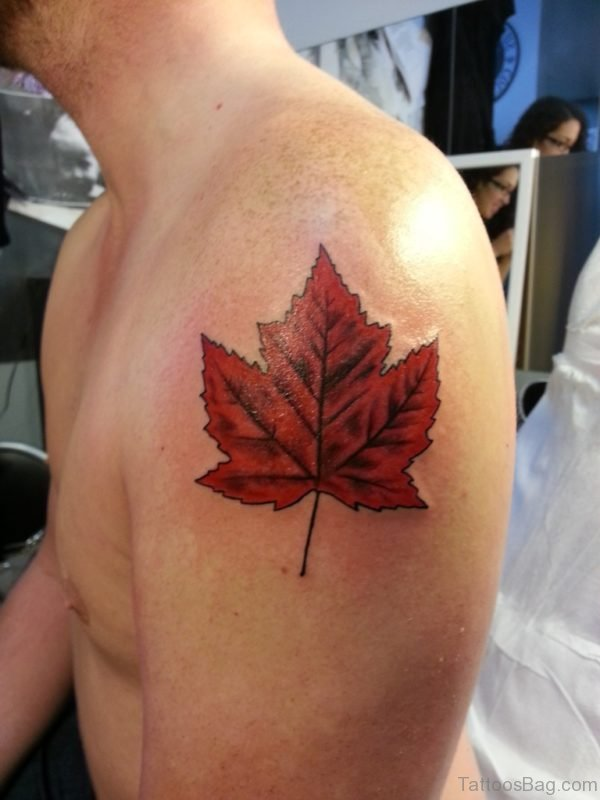 Leaf Tattoo On Shoulder