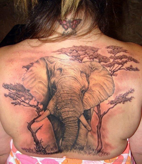 Lovely Elephant Tattoo On Back