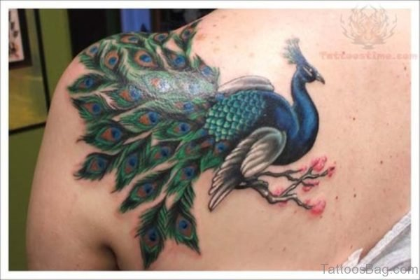 Lovely Peacock Tattoo On Shoulder