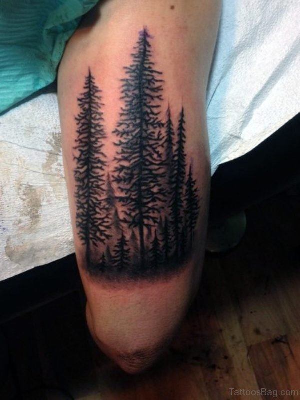 Lower Leg Pine Tree Tattoo For Men