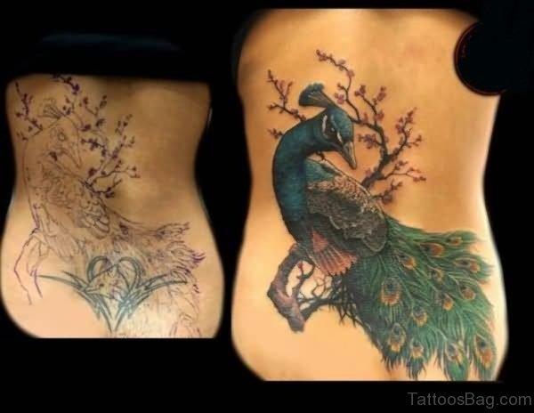 Marvelous Peacock Tattoo On Back