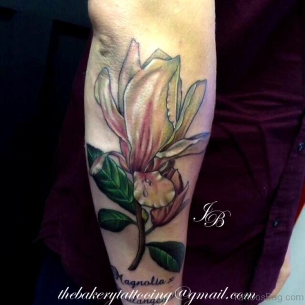 Nice Magnolia Tattoo On Arm