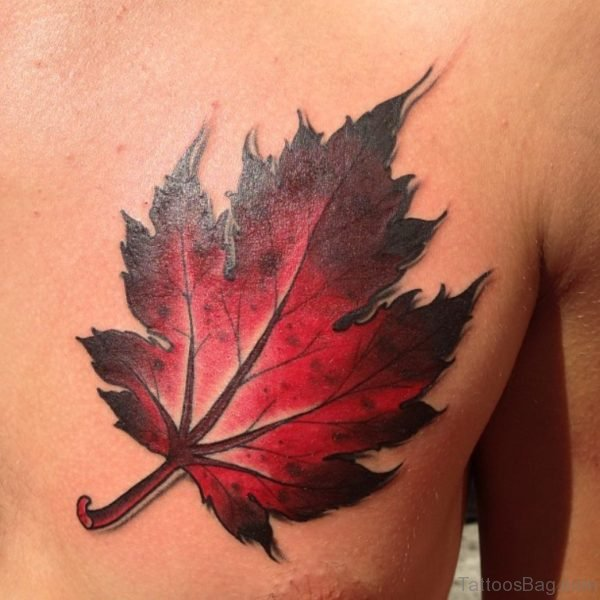 Nice Maple Leaf Tattoo Design