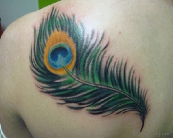 Nice Peacock Feather Tattoo On Shoulder