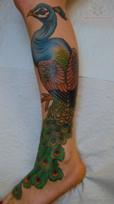 Nice Peacock Tattoo On Leg