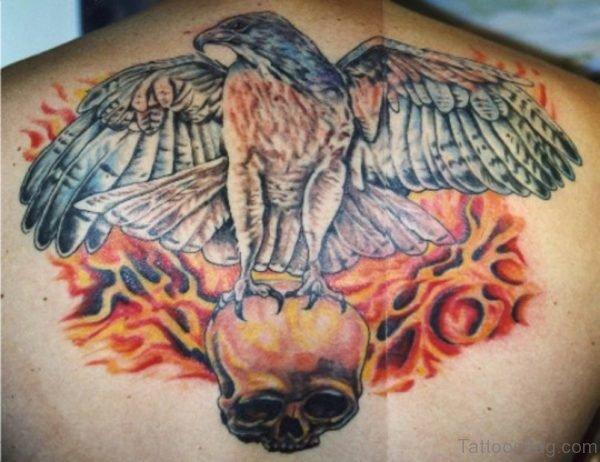 Open Wings Hawk Sitting on Skull Tattoo On Upperback