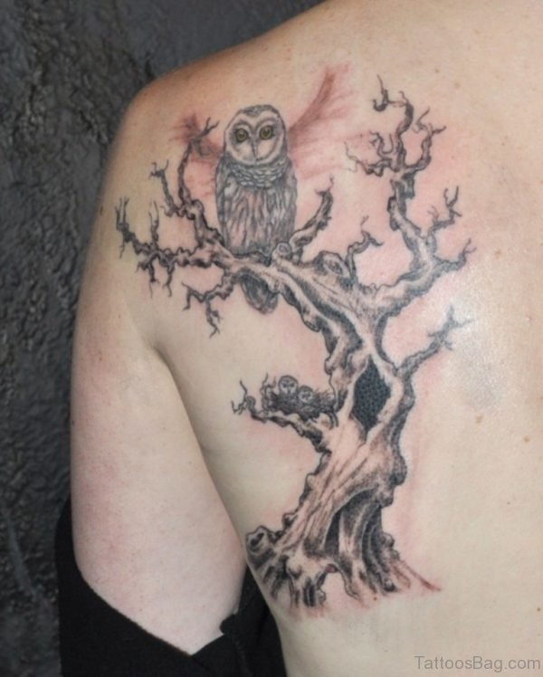 Owl And Tree Tattoo