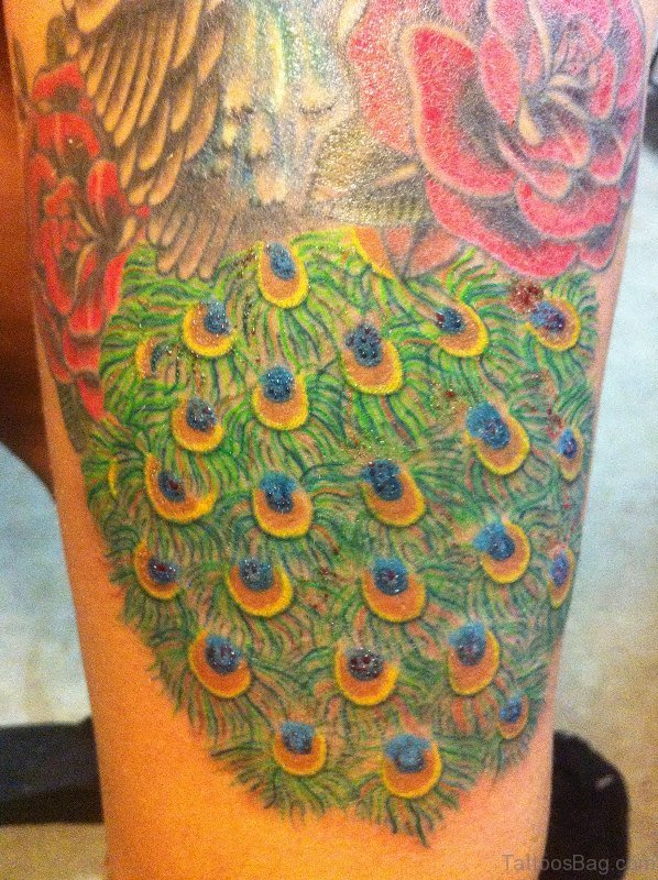 Peacock feather tattoo on thigh
