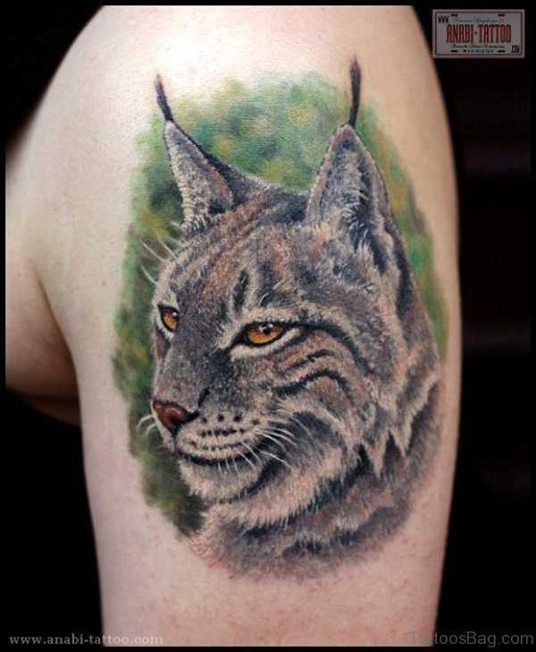 Realistic Cat Shoulder Tattoo