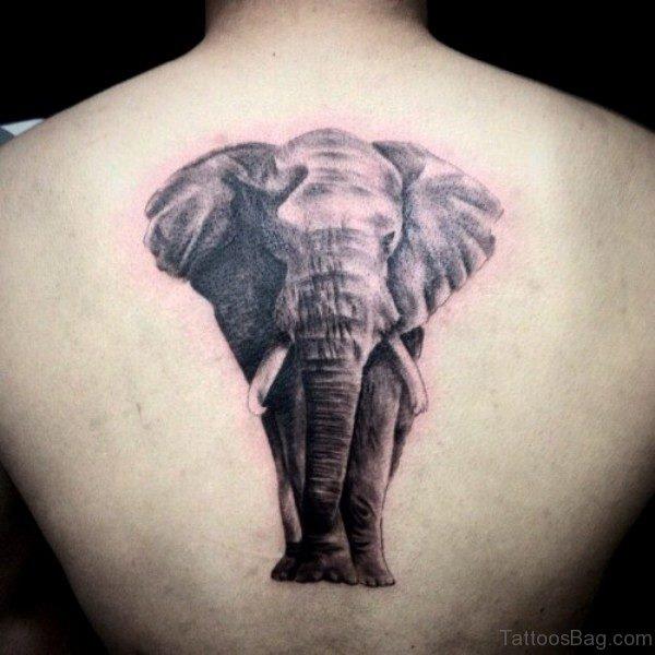 Realistic Elephant Tattoo On Back