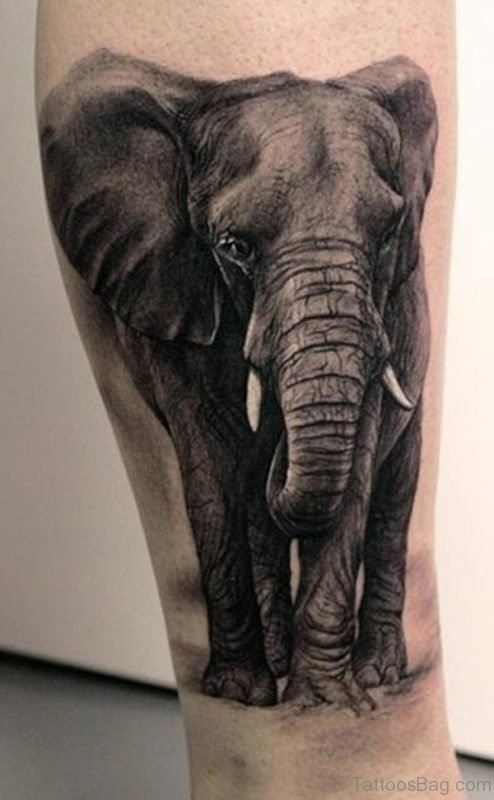 Realistic Elephant Tattoo On Leg