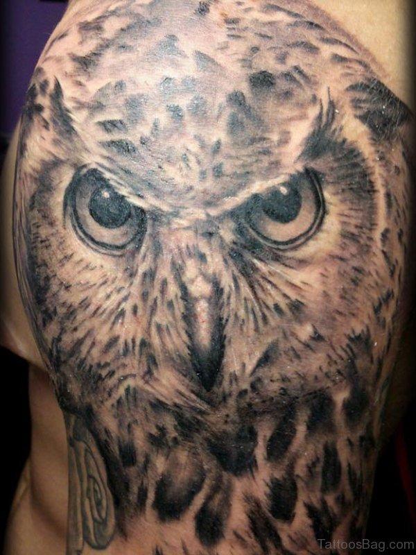 Realistic Owl Head Tattoo On Shoulder