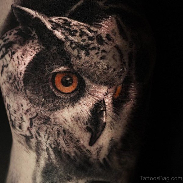 Realistic Owl Tattoo On Shoulder